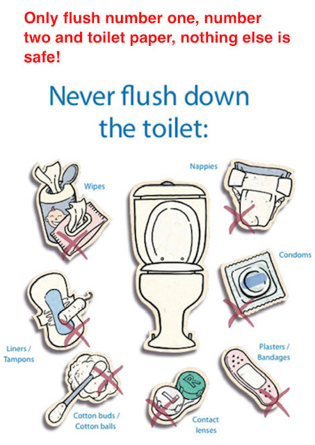 Please Never flush down the toilet