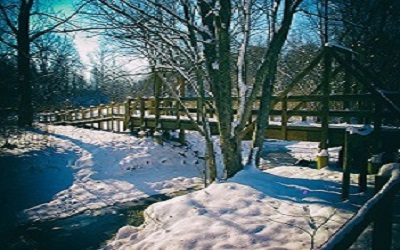 Spring Lake winter 1