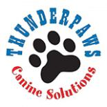 Thunderpaws