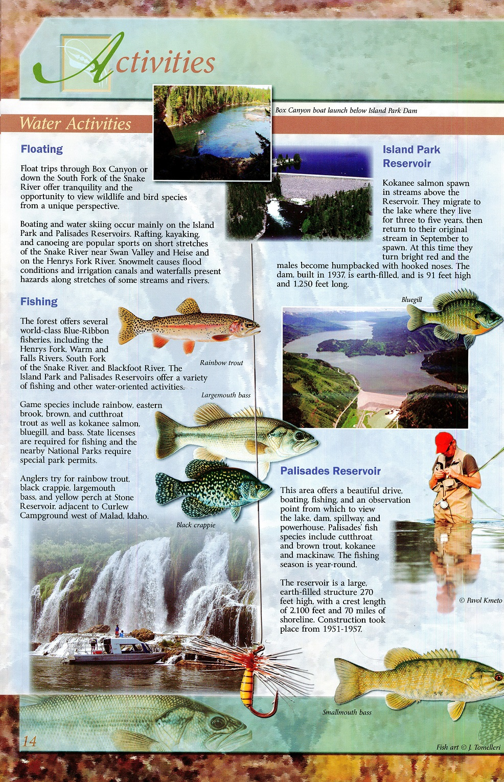 Forest_Service_Guide_Page_14