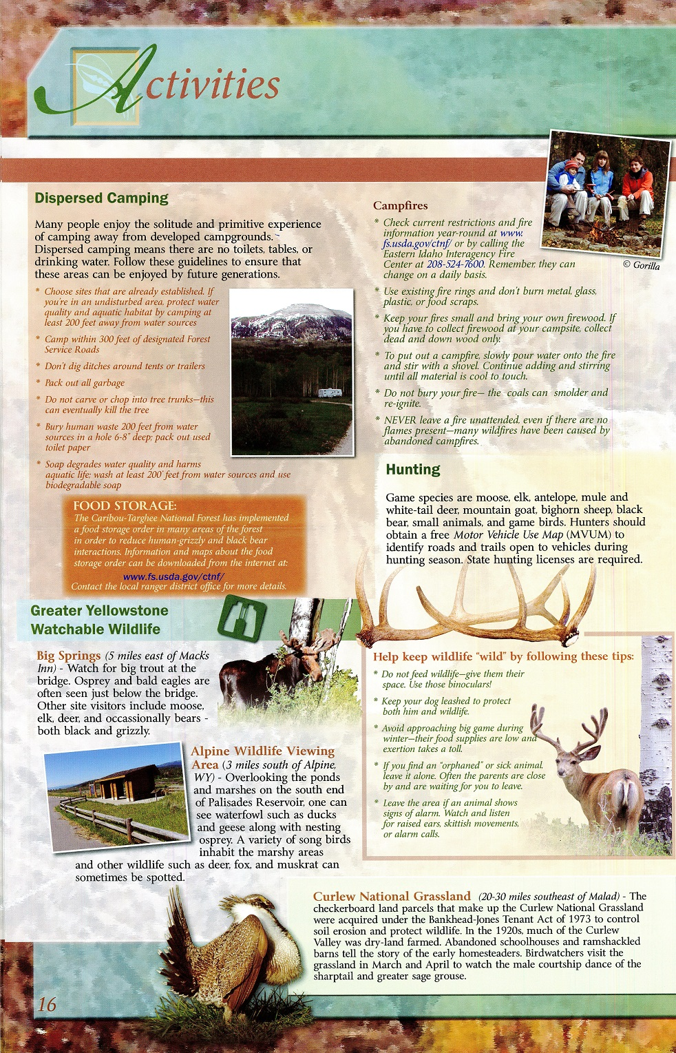 Forest_Service_Guide_Page_16
