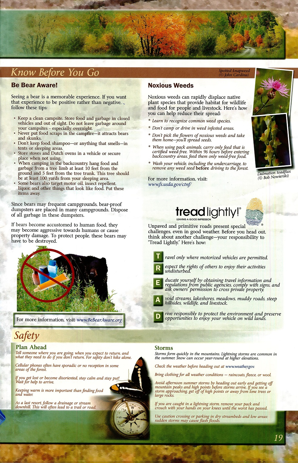 Below Is The Caribou Targhee National Forest Brochure That