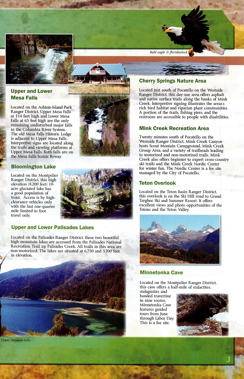 Forest_Service_Guide_Page_3A